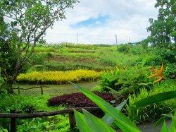 La Mesa Eco Park