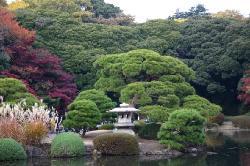 Tokio (30983351)
