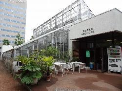 北海道大学植物园