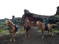 Reykjavik Riding Center