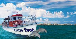 Little Toot Dolphin Adventures