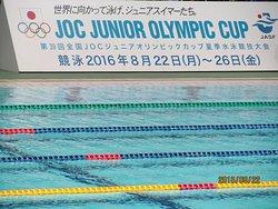 东京辰巳国际游泳场