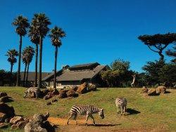 旧金山动物园