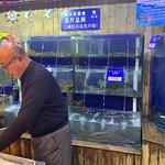 开海红岛海鲜虾水饺(湛山店): 开海红岛海鲜虾水饺(湛山店)照片