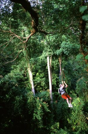 Langkawi Canopy Adventures