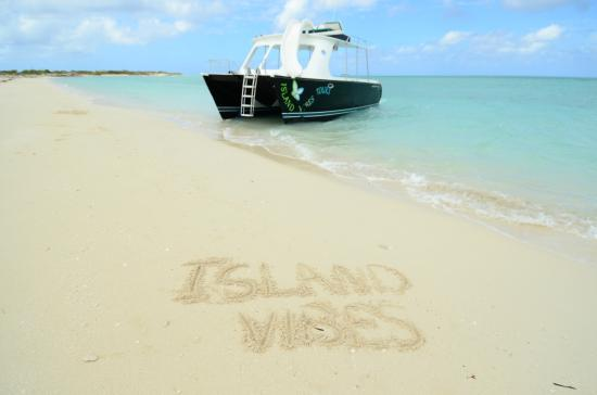 Island Vibes Tours