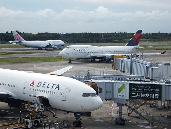 Mikikiitos - Narita International Airport Tour