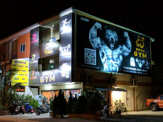 Bear Gym and Supplements Pattaya